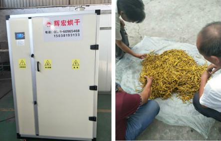 河南辉宏推送几款黄花菜烘干机